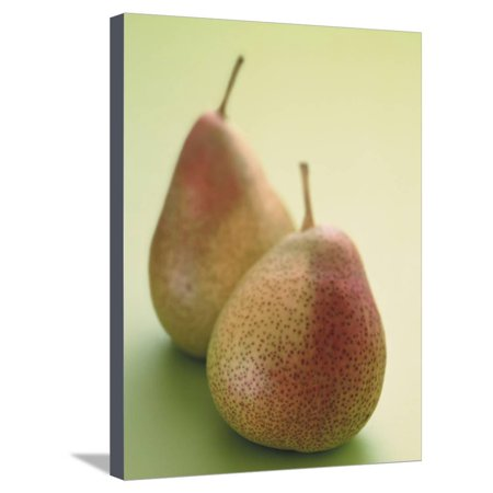 Two Pears on a Green Background Stretched Canvas Print Wall Art (2 Light Wall Bracket Pearl)