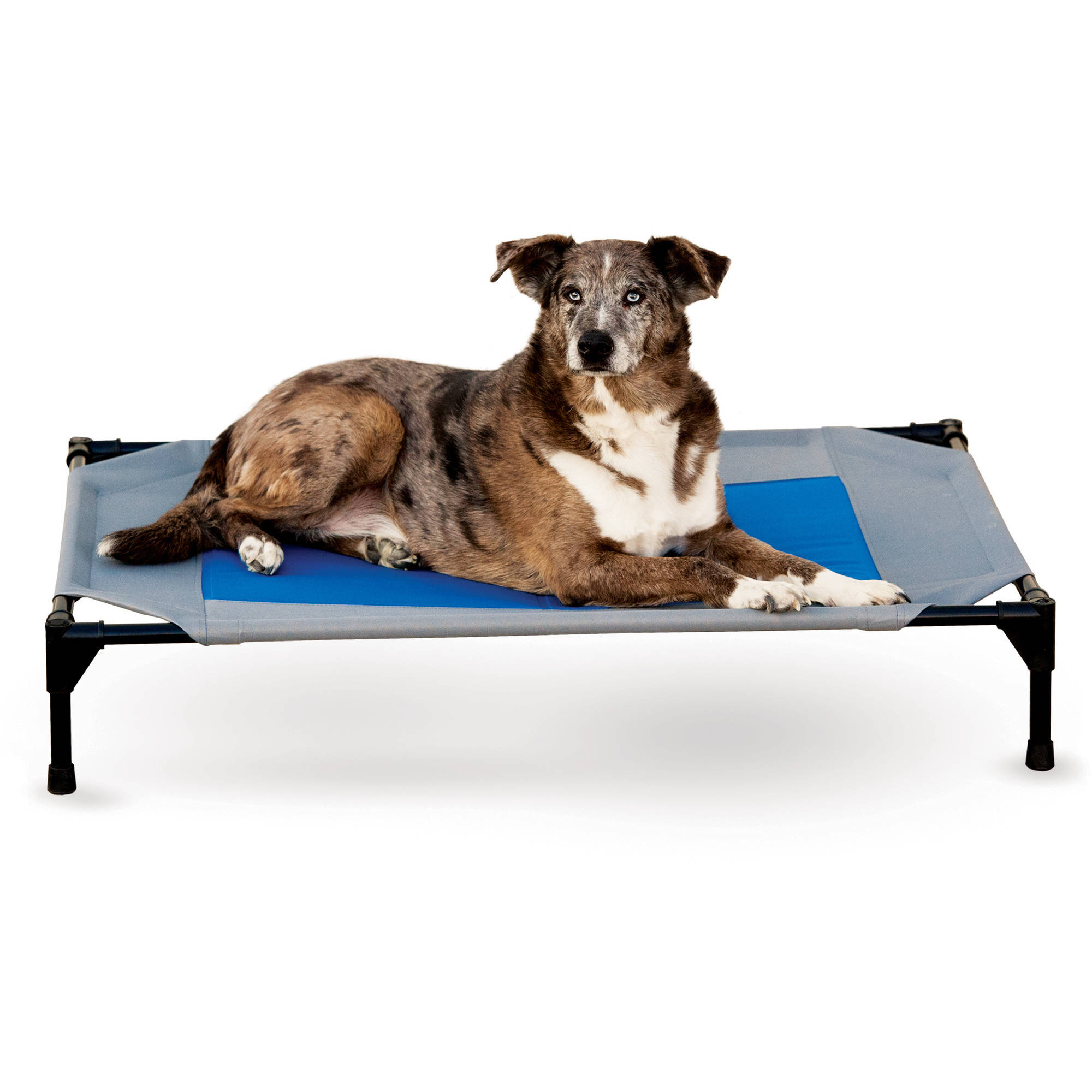 K&H Pet Products Coolin' Pet Cot, Large, Gray/Blue