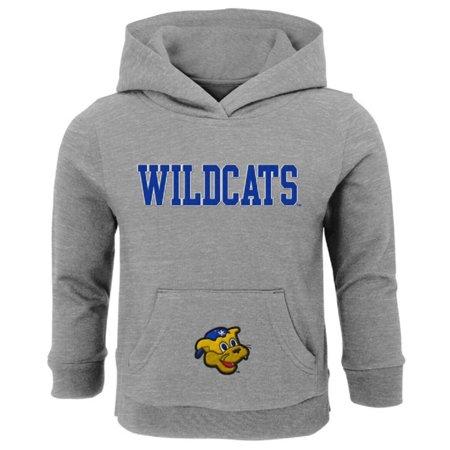 Infant Gray Kentucky Wildcats Team Logo Pullover Hoodie