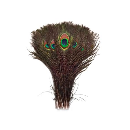 """100 Pieces - 10-12"""" Natural Peacock Tail Eye Wholesale Feathers (Bulk)"""