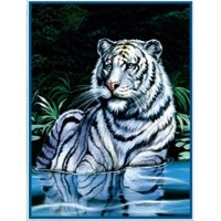 14f12cfe5f Product Image Ben and Jonah Royal Plush Extra Heavy Queen Size River Tiger  Blanket