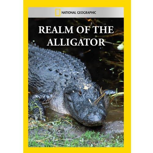 Realm Of The Alligator