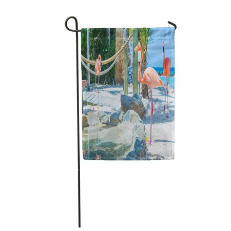 Iguana Garden (SIDONKU Blue Flamingo and Iguana Beach Aruba Private Island Green Garden Flag Decorative Flag House Banner 28x40 inch )