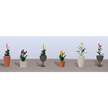 Flowering Potted Plants Assortment 4, 7/8 (6) Multi-Colored