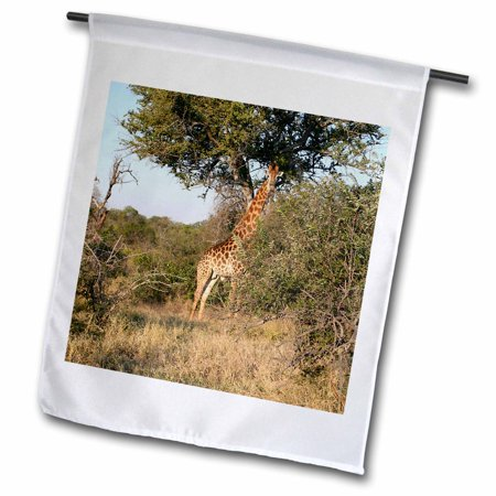 3dRose South African Giraffe full body view - Garden Flag, 12 by 18-inch ()