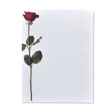 Gartner Studios Long Stem Rose Stationery, 40 count