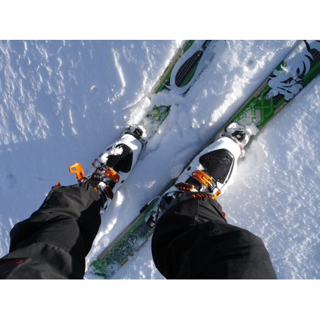 Canvas Print Touring Skis Backcountry Skiiing Ski Touring Binding Stretched Canvas 10 x