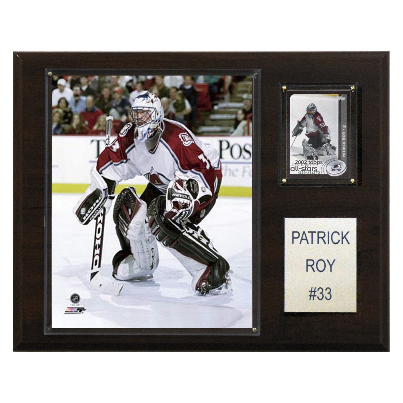 C&I Collectables NHL 12x15 Patrick Roy Colorado Avalanche Player Plaque