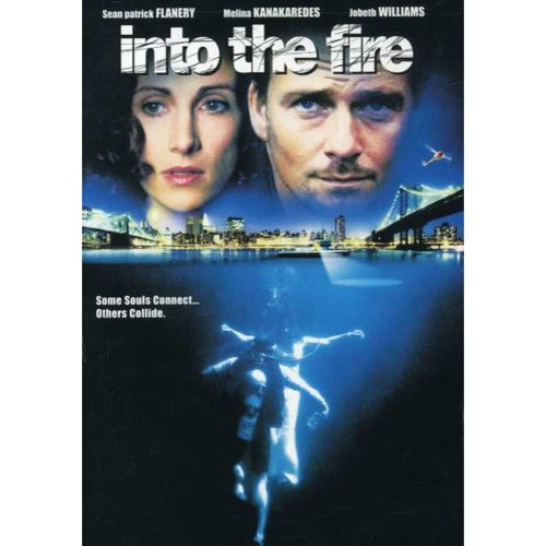 Into The Fire (Widescreen)