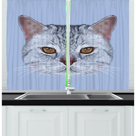 Cat Curtains 2 Panels Set  Scottish Straight Kitty Portrait Pet Lovely Companion Hipster Animal Graphic  Window Drapes For Living Room Bedroom  55W X 39L Inches  Pale Grey Baby Blue  By Ambesonne