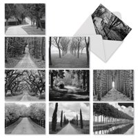 M3313 Tree Lines: 10 Assorted Blank Note Cards with Envelopes, The Best Card Company