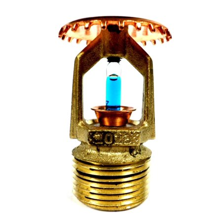 Tyco 575901286 Sprinkler Head TY4151 3/4 In 286F Brass Upright STD Coverage  K8 0