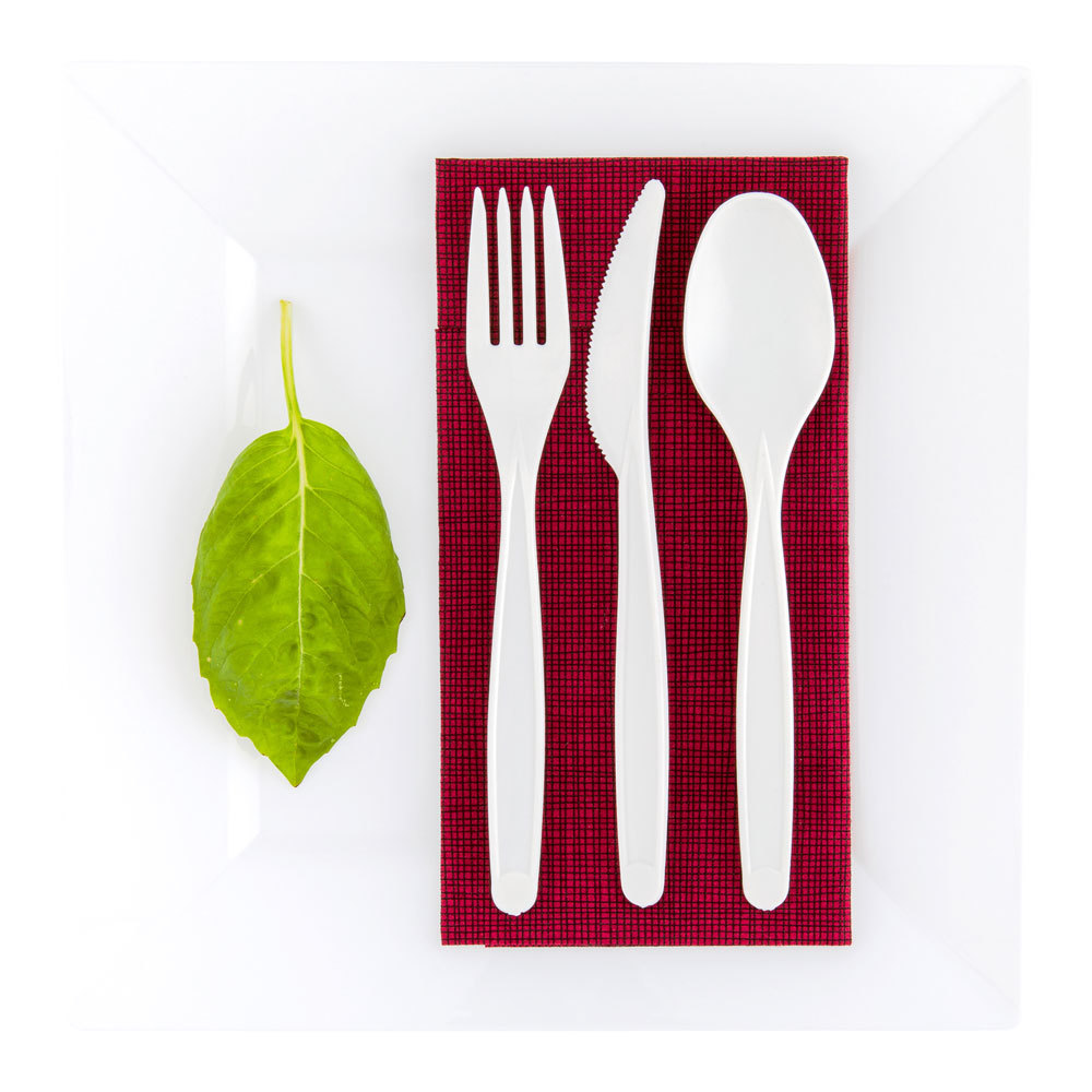 Restaurantware PLA Compostable Spoon (250 Count)
