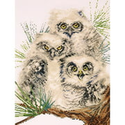 Tobin Julie Ueland Counted Cross-Stitch Kit, Owl Trio