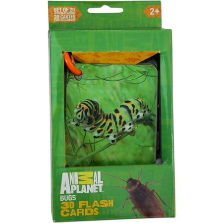 Smart Play Animal Planet 3D Flash Cards, Bugs (3d Planets)