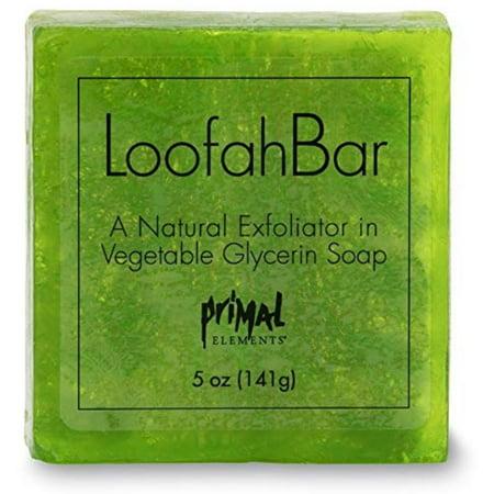 2 Pack - Primal Elements  Juicy Kiwi Loofah Glycerin Bar Soap 5.0 oz