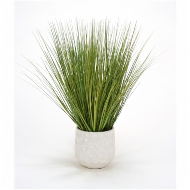 Distinctive Designs International 1927 Basil Grass in White Gabbi Planter