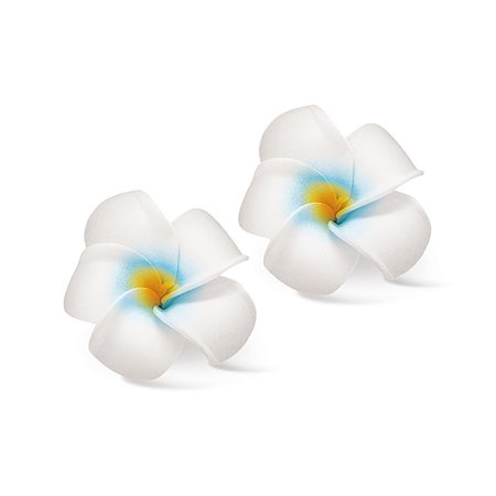 Hawaii Hair Clip Foam Flowers Set Of 2 Plumeria