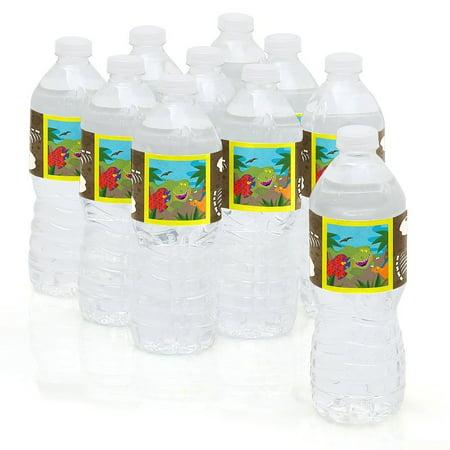 Dinosaur Birthday - Party Water Bottle Sticker Labels - Set of 10 - Dinosaur Birthday