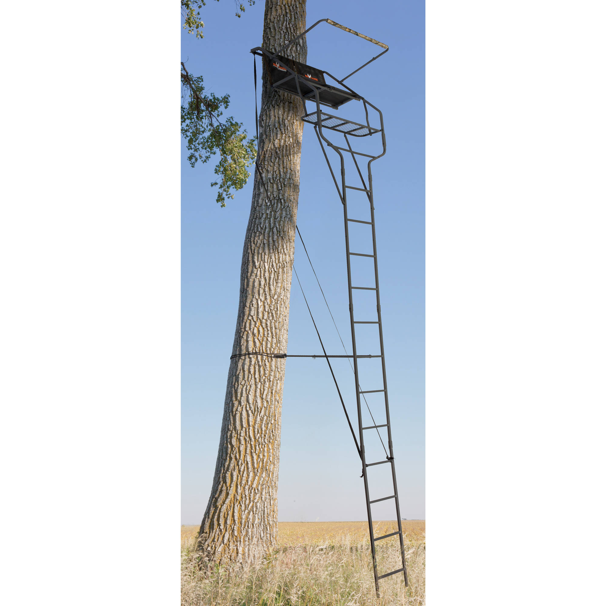 Big Game Envoy Ladderstand