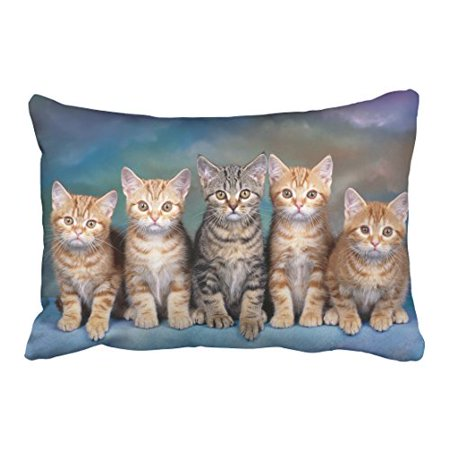 WinHome Decorative Custom Kitten Series Cute Cat Pillowcase Zippered Design Printed Pillow Case Cover Size 20x30 inches Two Side ()