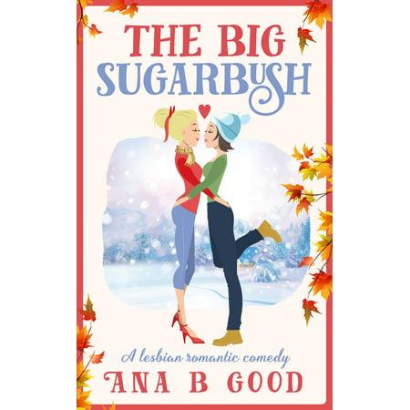 The Big Sugarbush: A Lesbian Romance - eBook