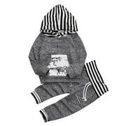 Toddler Infant Baby Boys Dinosaur Long Sleeve Hoodie Tops Sweatsuit Pants Outfit Set