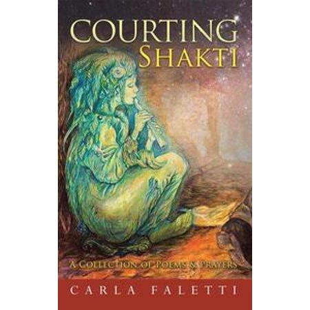 Shakti Floor - Courting Shakti - eBook