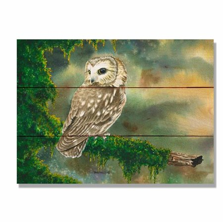 1bca7442732d Day Dream DBSW1511 15 x 11 in. Bartholets Saw Whet Wall Art - image 1 ...