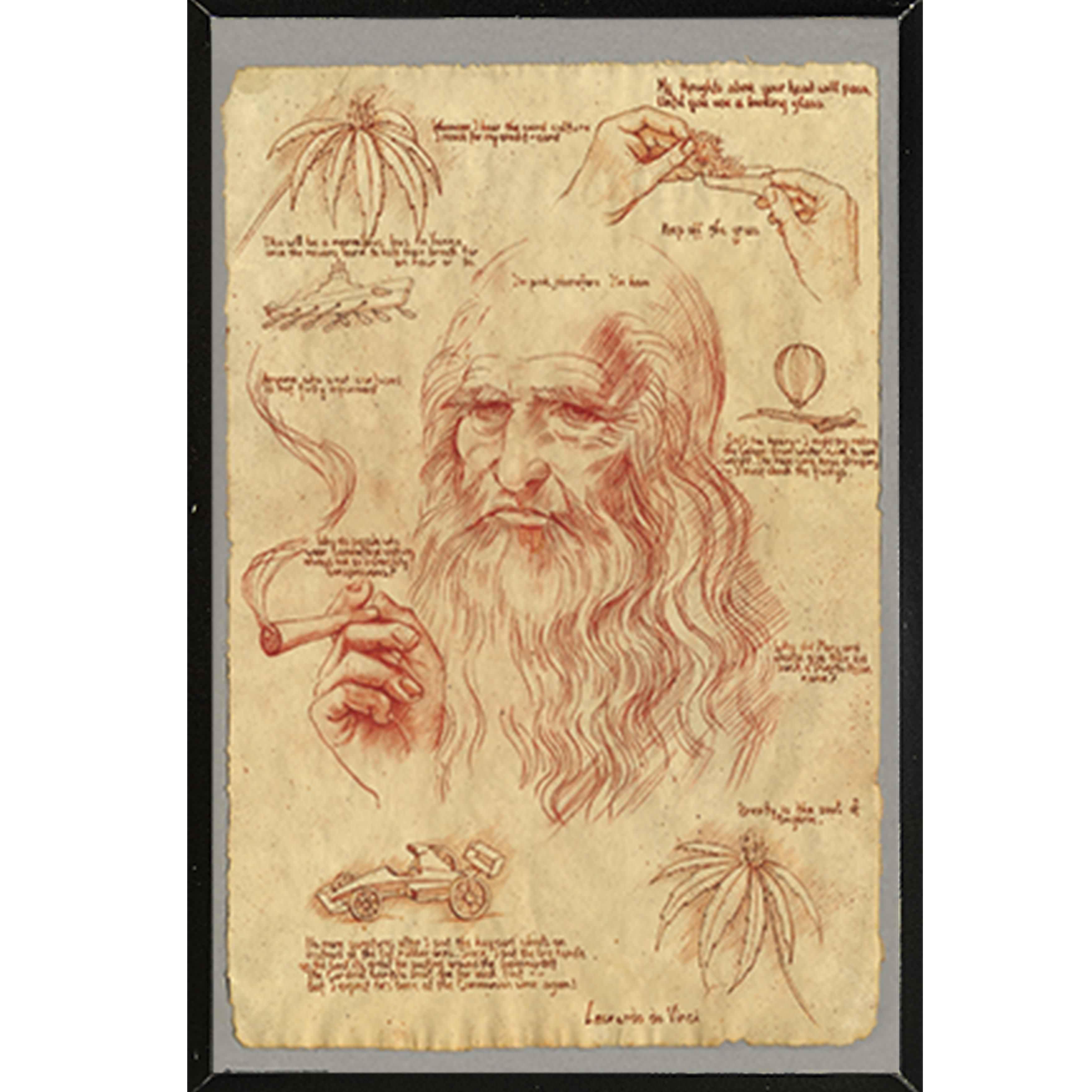 Leonardo Pot Poster on a Black Plaque (24x36)