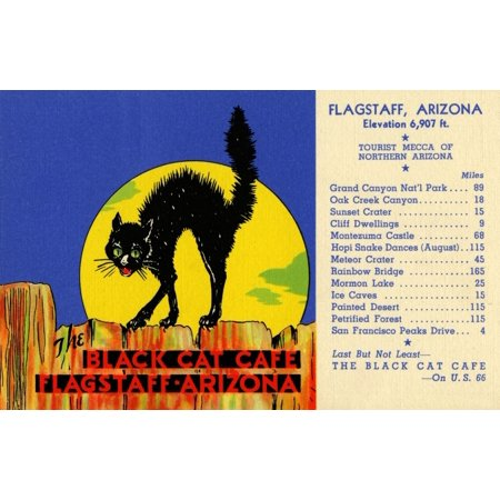 Advertising postcard for The Black Cat Caf? of Flagstaff, Arizona on Route 66.  A scared cat with his hackles up standing on a fence. Poster Print by Curt Teich & Company Hotel Advertising Postcard