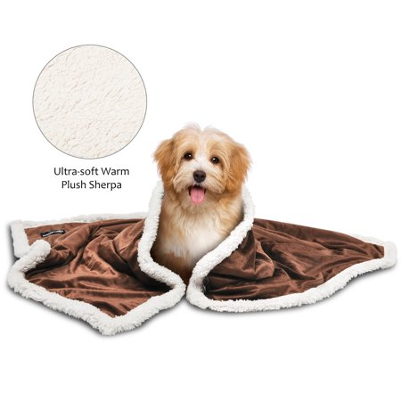 Pawsse Pet Dog Sherpa Blanket Plush Soft Snuggle Puppy Kitten Blanket Throw for Sleep Mat Couch Sofa Doggy Bed Kennel Carrier, 45-Inch-by-30-Inch, Warm Cozy Reversible ()