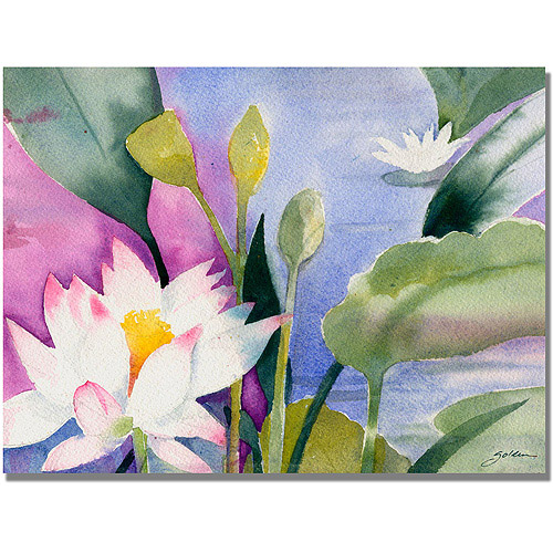 "Trademark Art ""Lotus Pond"" Canvas Art by Shelia Golden"