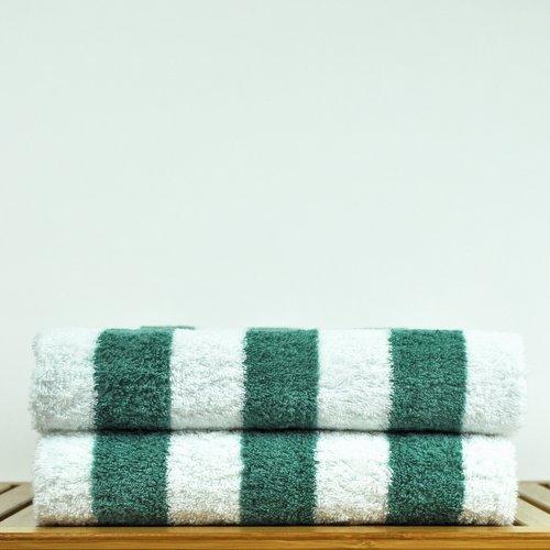 Bare Cotton Luxury 100pct Cotton Beach Towel (Set of 2)