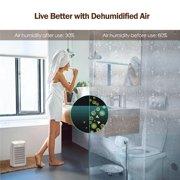 Jinveno T9 23W Dehumidifier Air Dryer Moisture Absorber with 500ML Water Tank (UK)