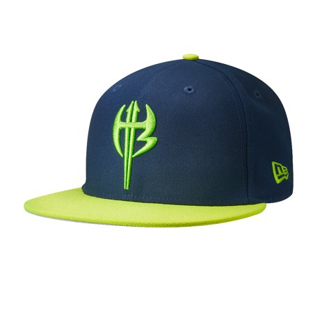 Official WWE Authentic The Hardy Boyz New Era 9Fifty Snapback Hat