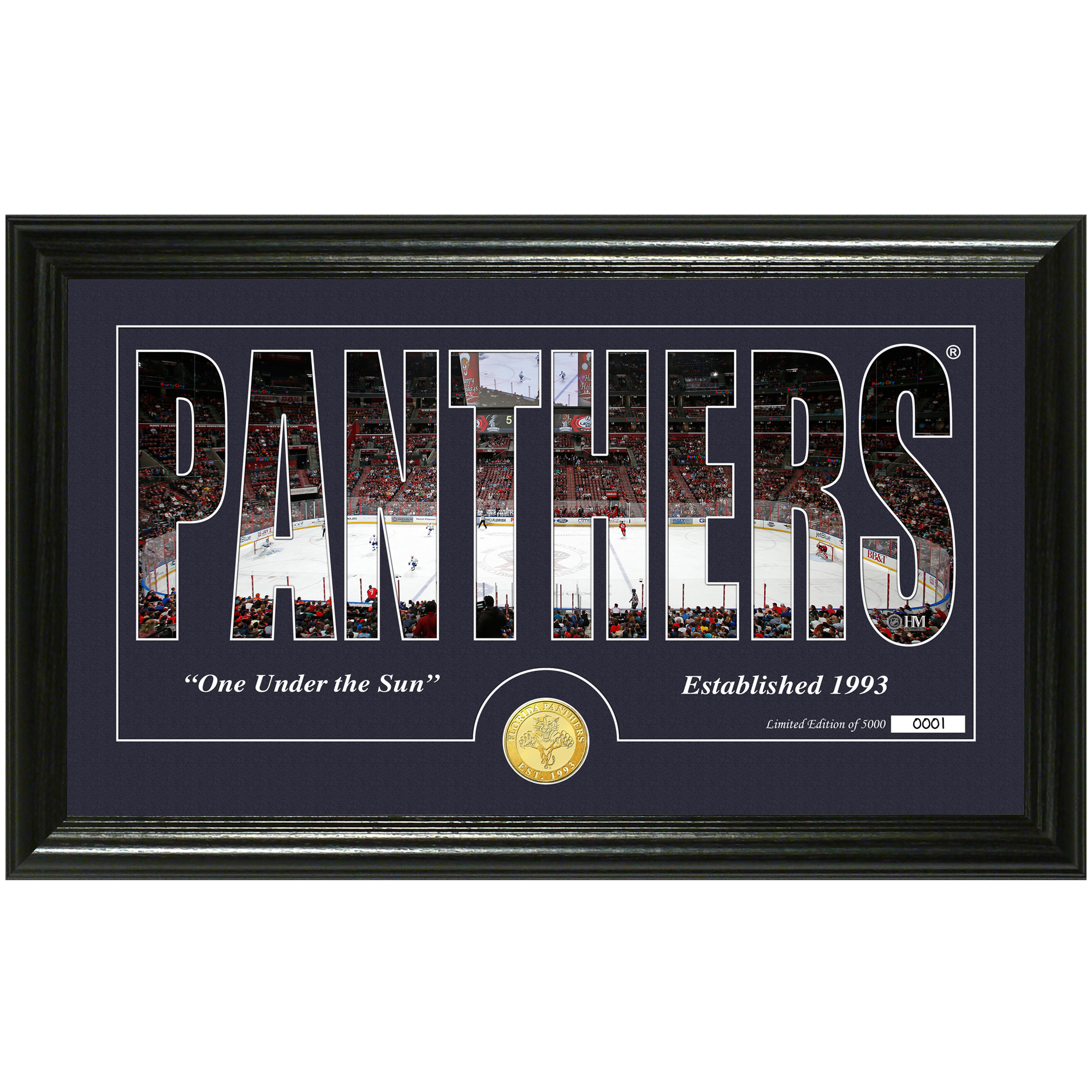 "Florida Panthers Highland Mint 12"" x 20"" Silhouette Bronze Coin Panoramic Photo Mint - No Size"