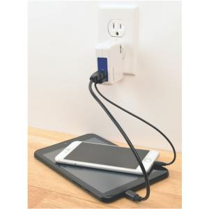 Tripp Lite U280-002-W12 3.4-Amp 2-port USB Wall Charger/travel Charger