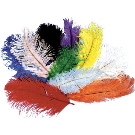 Morris Costumes Accessories & Makeup Feathers Boas Ostrich Black, Style BB05BK