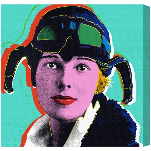 Ivy Bronx 'Amelia Earhart' Painting Print on Wrapped Canvas