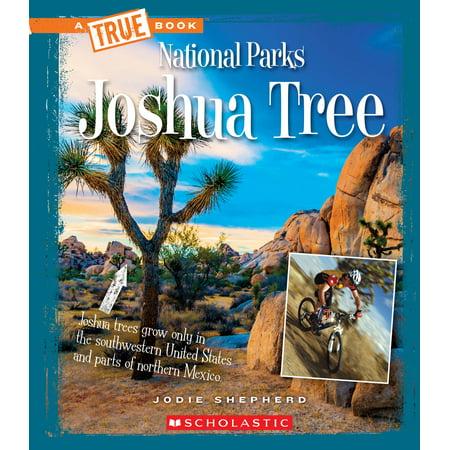 Joshua Tree (Best Climbs In Joshua Tree)