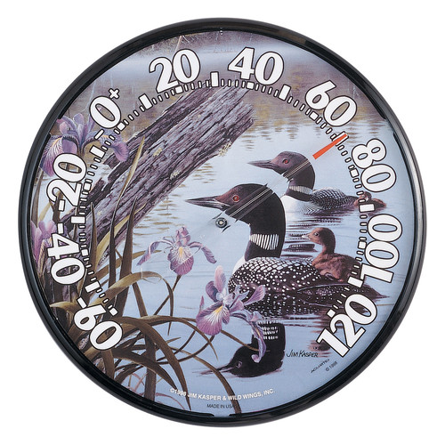 Image of Accurite Loons Thermometer