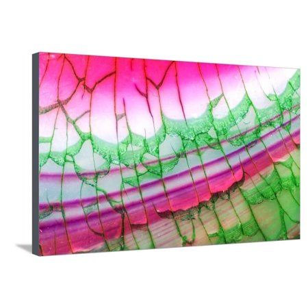 Pink Green Dragon Vein Agate Pattern Stretched Canvas Print Wall Art By maury75