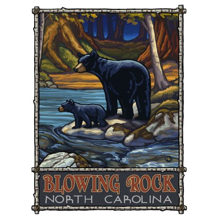 Blowing Rock North Carolina Bears In Stream Giclee Art Print Poster by Paul A. Lanquist (9