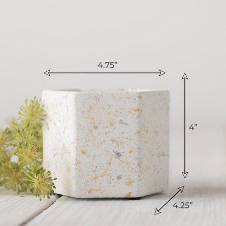 Mini Concrete (George Oliver Gales Mini Flower Concrete Pot Planter (Set of 4) )