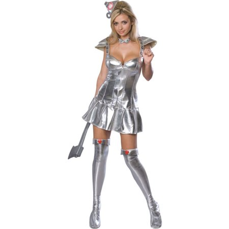 Morris Costumes Womens Tv & Movie Characters Wizard Of Oz Dress XS, Style RU888293XS