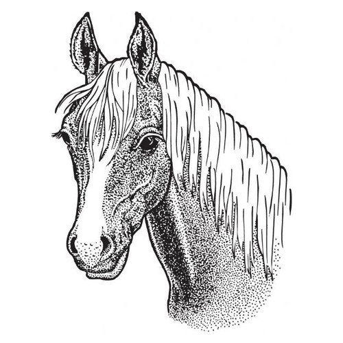 Sarasota Stamps Mounted Rubber Horse Stamp