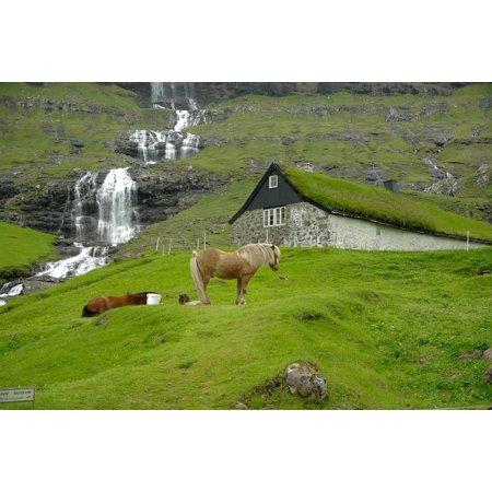Peel-n-Stick Poster of Faroe Islands Horses Fjord Cascade Poster 24x16 Adhesive Sticker Poster (Faroe Islands Ships)