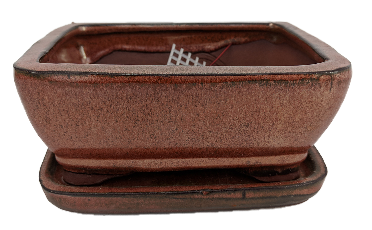 """Pro Bonsai Pot Saucer Pre-Wired CopperRoundedRect- 6 3 8""""x4 3 4""""x2 5 8"""" by"""