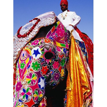Entrant in Best Dressed Elephant Competition at Annual Elephant Festival, Jaipur, India Print Wall Art By Paul (Best Amplifier For Home In India)